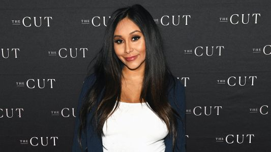 Snooki Slams Fan Who Says She Posts Too Many Baby Bump Updates: 'We Get It, You're Pregnant'