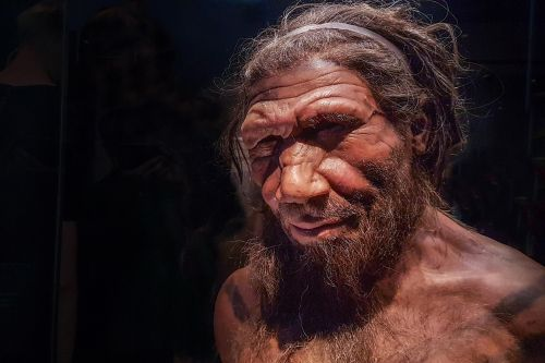 Yes, Neanderthals and humans had cave sex - but did they kiss?