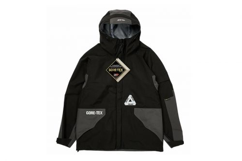 Palace Fall 2020 GORE-TEX