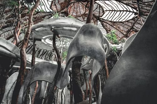 Alien-Like Arts Complex Emerges in the Mexican Jungle