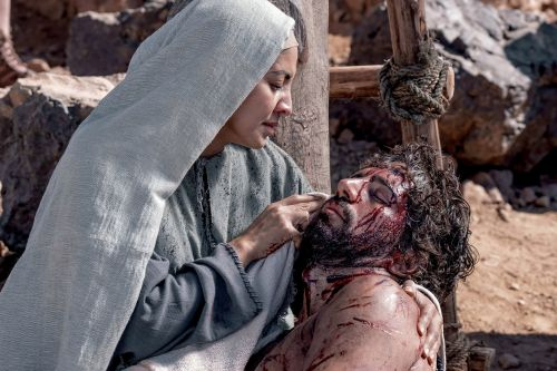 'Jesus: His Life' dispels beliefs about Christ and biblical history
