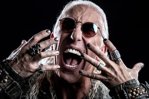 Twisted Sister legend Dee Snider's booming voiceover career