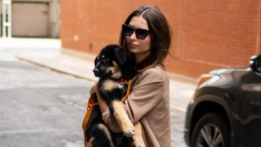 Emily Ratajkowski Brings Puppy Colombo to the Bar for Her 28th Birthday: 'Ready for His Drank'