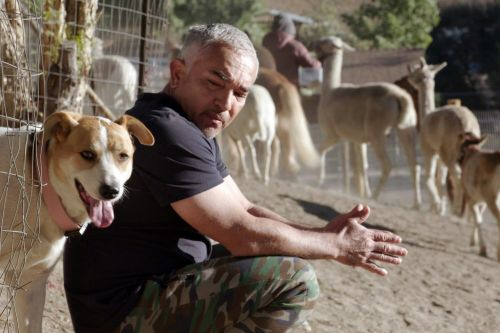 Dog Whisper Cesar Millan returns with new show on pandemic pooches