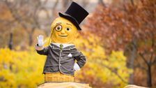Planters Suspends 'Mr. Peanut Is Dead' Campaign Out Of Respect For Kobe Bryant