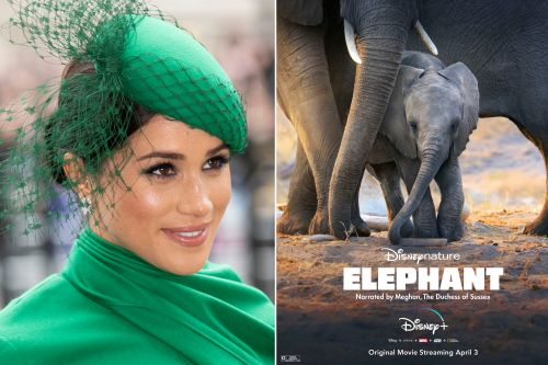 Meghan Markle becomes Disney star with new 'Elephants' trailer