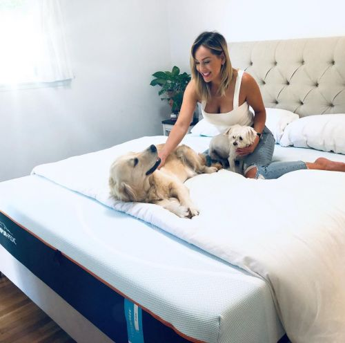Meet Bachelorette Clare Crawley's 2 Dogs Elby and Honey: 'They Give Me Happiness'
