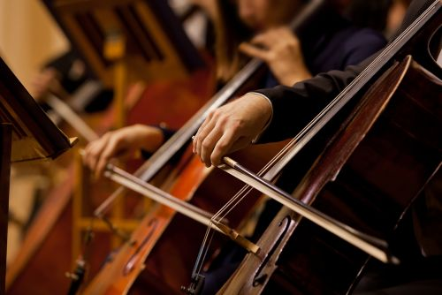 Smarter people listen to instrumental music: study