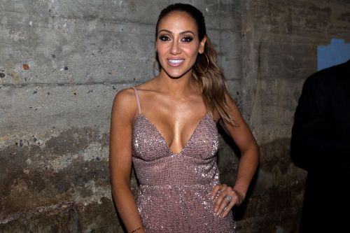 To This Day, 'RHONJ' Fans Can't Let Go of the Rumors That Melissa Gorga Was a Stripper!