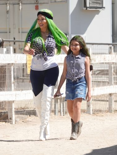 Farrah Abraham and Her Daughter Sophia Wear Matching Plaid Crop Tops While Rocking Green Hair