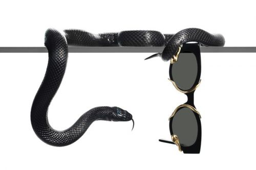 Alexander Wang and Gentle Monster Reveal Snake-Themed Collaboration