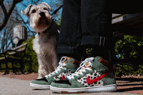"Take a Closer Look at the Nike SB Dunk High ""Walk the Dog"""