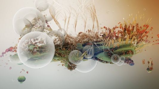For Björk visual artist Tobias Gremmler, nature is the source of all beauty