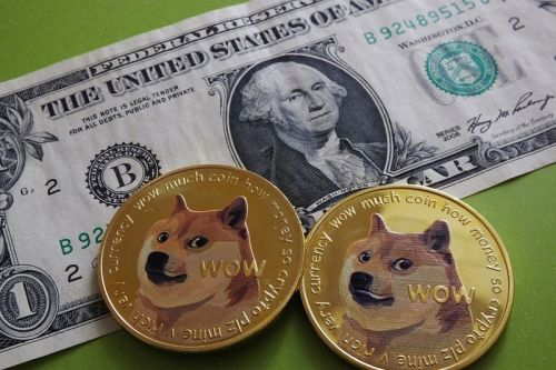 Dogecoin Investor Refuses To Sell Despite Losing $167K USD in a Single Day