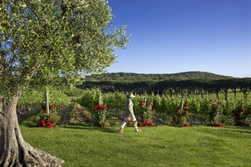 Discover the Real Tuscany at Le Ville Serristori