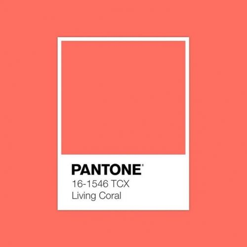 Coral is the colour of 2019: here are the best beauty products