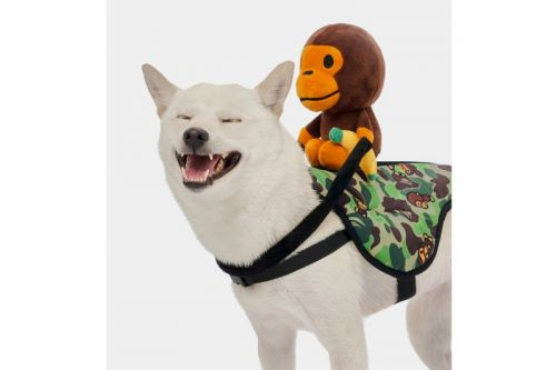 Baby Milo FW19 Pet Collection Features Camo-Heavy Accessories
