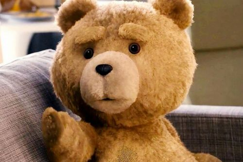 Seth MacFarlane's 'Ted' to Receive NBC Peacock Live-Action TV Adaptation