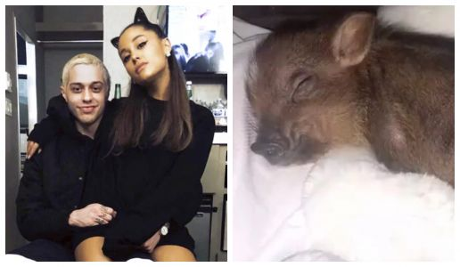 Ariana Grande Reportedly Returned Her Wedding Ring To Pete Davidson. But Kept Their Pet Pig